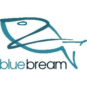 BlueBream
